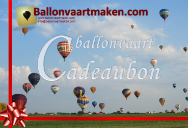 Ballonvaart ticket Leiden